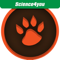 Science4you - Camp